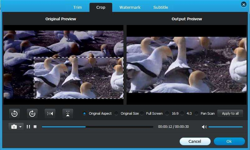 los cultivos de vídeo