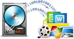 Sistema de seguridad de Windows y Archivos