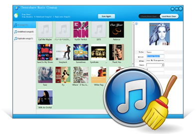 Tenorshare音楽のクリーンアップ
