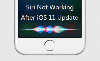 iphone siri not working top 9 ways to fix siri not working on iphone ios 11 15459