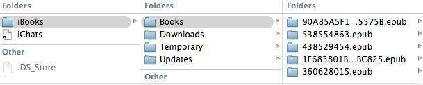 start to export ibooks