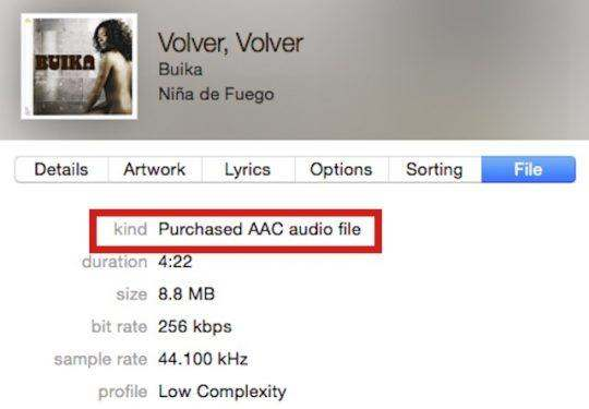 protected audio format