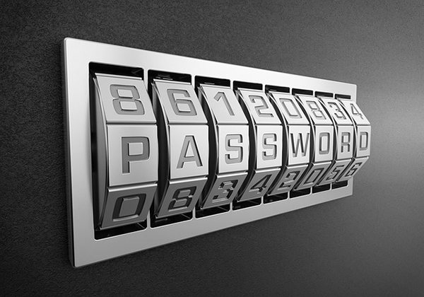 do not save passwords